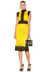 Dolce And Gabbana Lace Midi Dress In Black Yellow Black Yellow