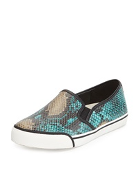 Alice Olivia Piper Snake Print Leather Sneaker Turquoise Multi
