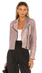 Cupcakes And Cashmere Hollister Metallic Knit Moto Jacket In Blush. Pale Mauve