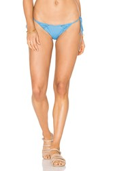 Clube Bossa Lauder Bottom Blue