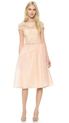 Reem Acra Re Embroidered Lace Cap Sleeve Dress Powder