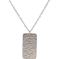 Dog Tag And Oval Link Chain Silver