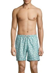 Black Brown Shark Print Swim Trunks Turquoise