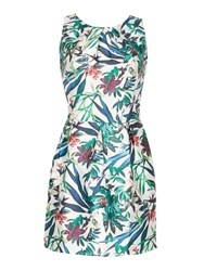 Cutie Jungle Print Dress Green
