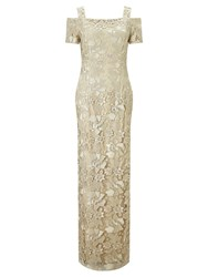 Adrianna Papell Long Lace Dress Beige