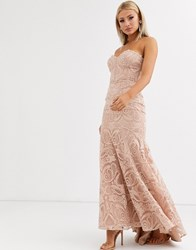 Jarlo Bandeau Lace Embroided Maxi Dress With Fishtail In Pearl Pink