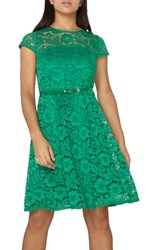 Dorothy Perkins Women's Lace Fit And Flare Dress Green
