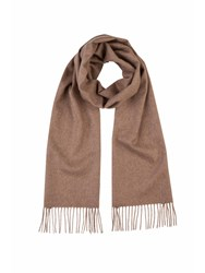 Johnstons Of Elgin Cashmere Scarf Brown
