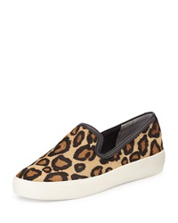 Sam Edelman Becker Calf Hair Slip On Sneaker Leopard