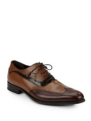 Mezlan Tri Tone Leather Wingtip Oxfords Brown