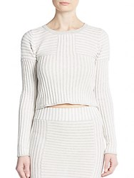 Knitz By For Love And Lemons Switch Stripe Ribbed Knit Crop Top Grey Stripe