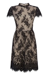 Oasis Gothic Lace Dress Black