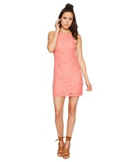 Bishop Young Romantic Lace Dress Coral Women's Dress
