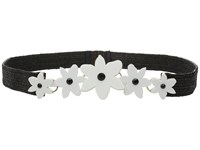 Kate Spade Stretch Straw Belt W Lilly Belt Fresh White Black Straw
