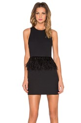Endless Rose Feather Mini Dress Black