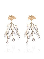 Apples And Figs Sea Shore Leaf Drop Earrings Gold