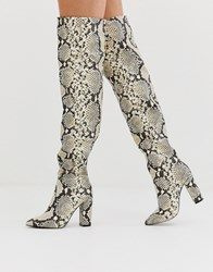 Call It Spring By Aldo Slouch Knee High Boots In Snake Print Multi