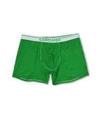 Icebreaker Anatomica Boxers W Fly Lawn Men's Clothing Green