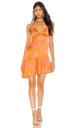 Privacy Please Daphne Mini Dress In Orange. Marigold Ana Floral