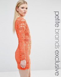 True Decadence Petite Long Sleeve All Over Graphic Lace Mini Dress Orange Nude