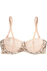 Mimi Holliday Frost Leopard Lace And Satin Underwired Bra Pink