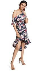 Fame And Partners The Schalice Dress Evening Rose Print