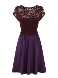 Hotsquash Lace Ana Party Dress In Clever Fabric Purple
