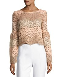 Wayf Time Stops Lace Crop Top Light Pink