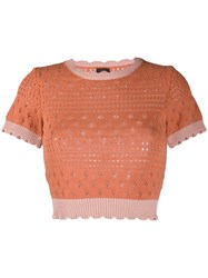 Pinko Knitted Crew Neck Top 60
