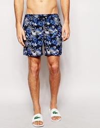 New Look Swim Shorts With Floral Print Multi