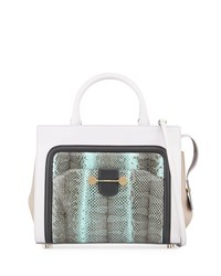 Jason Wu Daphne Watersnake And Leather Crossbody Tote Bag Glass