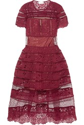 Zimmermann Guipure Lace Dress Burgundy