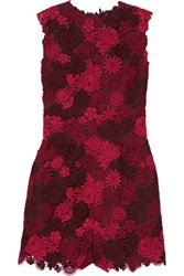 Valentino Cotton Blend Guipure Lace And Silk Playsuit Claret