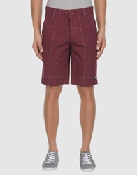 0051 Insight Bermudas Maroon