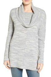 Caslon Side Slit Cowl Neck Tunic Petite Gray