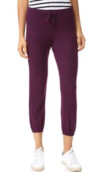 Velvet Galenia Cozy Jersey Pants Blackberry