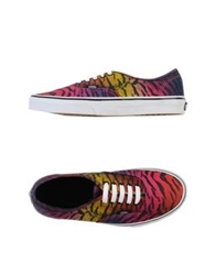 Vans Low Tops And Trainers Fuchsia