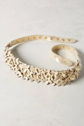 Anthropologie Floral Naomi Belt Gold