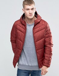 Jack And Jones Padded Hooded Jacket Burgundy Red