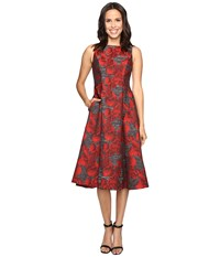 Adrianna Papell Sleeveless Jacquard Tea Length Dress Black Crimson Women's Dress