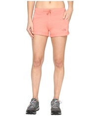 The North Face Tri Blend Shorts Burnt Coral Heather Women's Shorts Pink