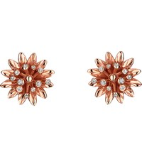 Gucci Flora 18Ct Pink Gold Earrings