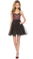 Alice Olivia Audrie Party Dress Black Gold