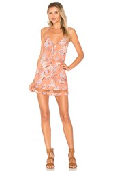 Ale By Alessandra Lucia Dress Coral