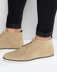 Asos Lace Up Boots In Stone Suede With White Wedge Sole Stone