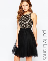 Little Mistress Petite Disc Embellished Bodice Prom Dress Black