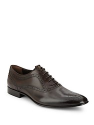 Roberto Cavalli Leather Brogue Derby Shoes Brown