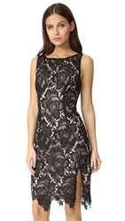 Bb Dakota Bristow Midi Lace Dress Black
