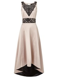 Phase Eight Collection 8 Francis Lace Dress Champagne