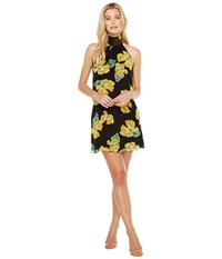 Brigitte Bailey Leslie High Neck Dress Black Yellow Women's Dress Gray